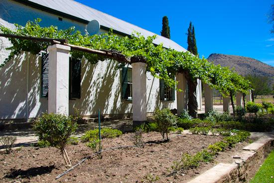 Langfontein Guest Farm