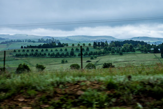 KZN Midlands