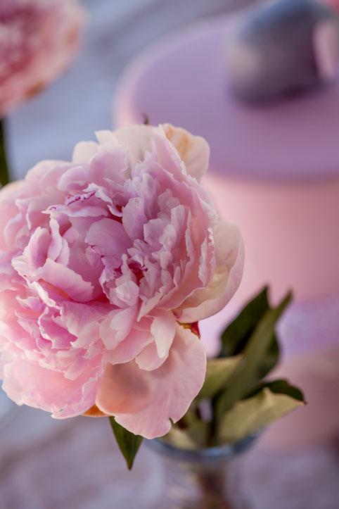 Pink peony centrepiece