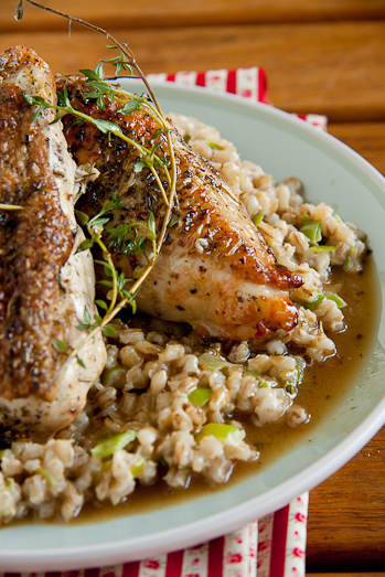 Roasted chicken breasts with barley risotto