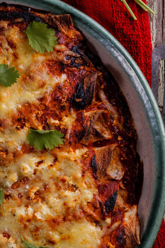 Shredded Chicken Enchiladas Simply Delicious