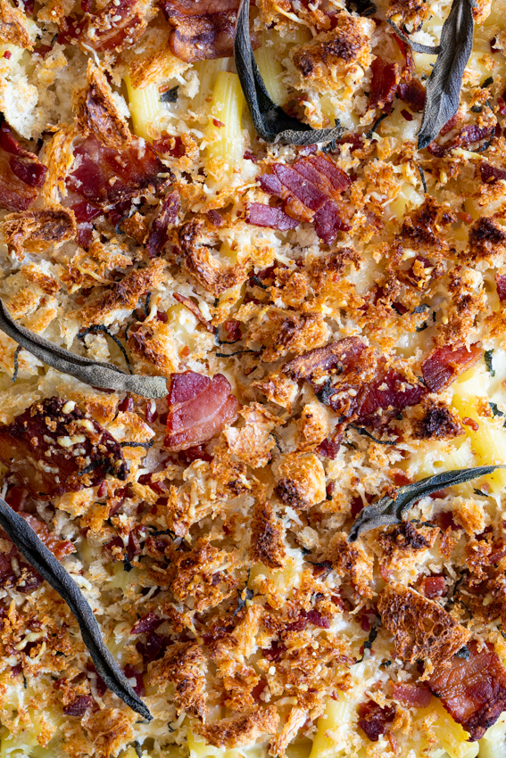 Creamy mac and cheese with bacon crumbs