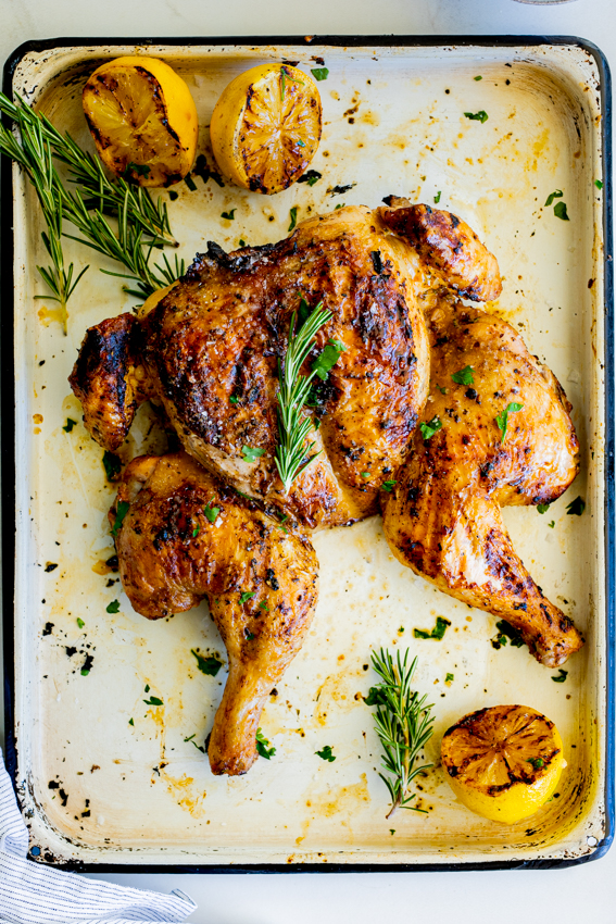 Lemon Rosemary Spatchcock Chicken