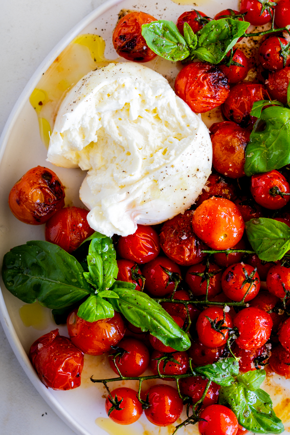 Grilled tomatoes with burrata